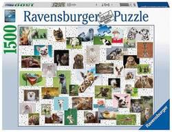 Ravensburger puslespel 1500b Funny Animals 1500 bitar - Ravensburger