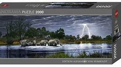 Heye Panorama Herd of Elephants 2000b 2000 bitar - Heye
