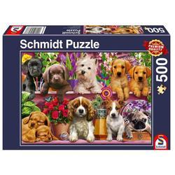 Puslespel Schmidt 500b Puppies on the shelf 500 bitar - Schmidt