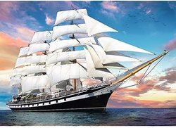 Trefl puslespel 1000 Cruise 1000 bitar - Trefl